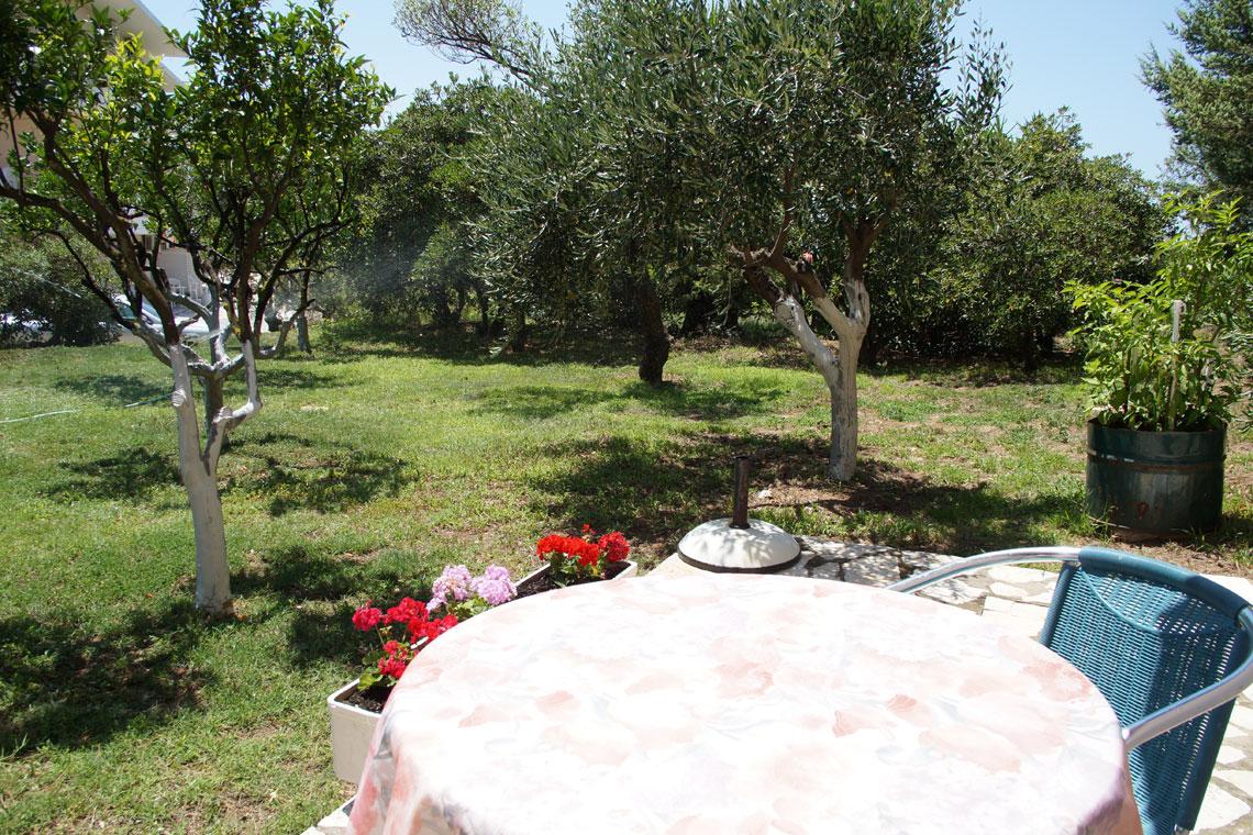 double-garden-view-studio-4